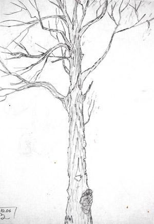 Рисуем природу поэтапно карандашом